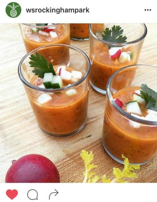 WS IG of gazpacho